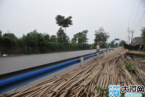 北京动物园的熊猫曾以博爱竹叶为