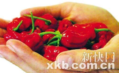 最辣的辣椒_世界上最辣的辣椒是什么椒