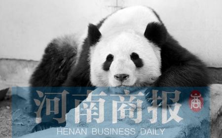 市民质疑郑州动物园变相收费